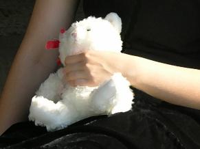 teddy c 029